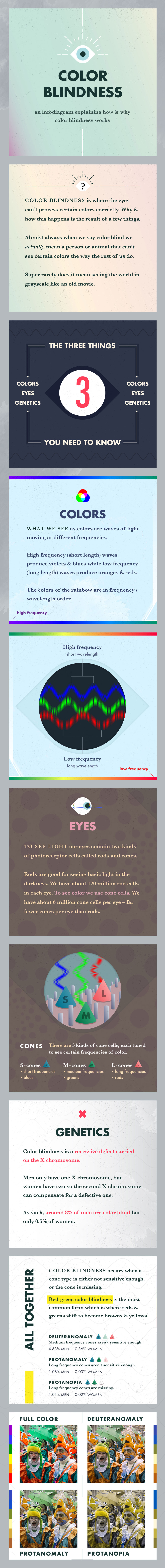 Color Blindness info diagram